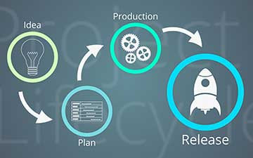 PMP® 2: Project Processes and the Project Life Cycle